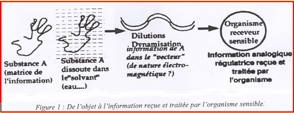 bastide 1